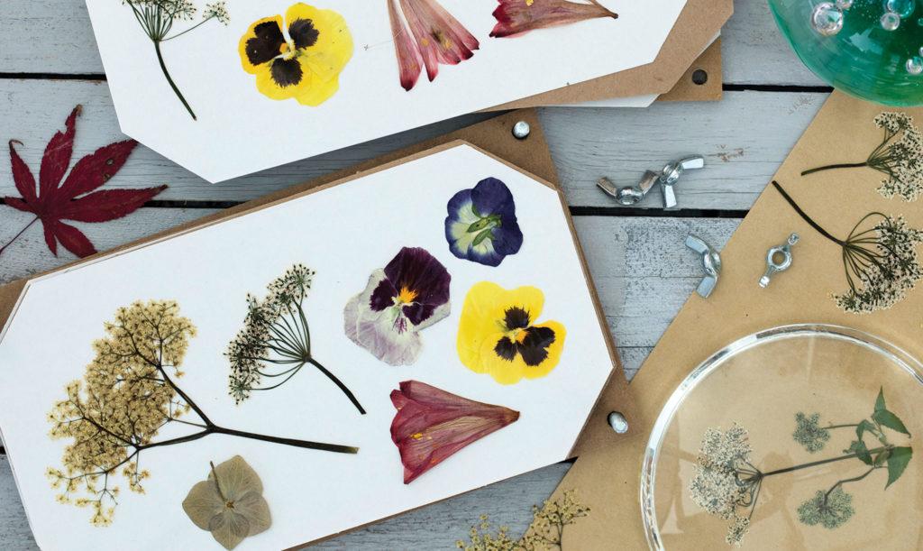 Pressede blomster (fra ALT.dk)